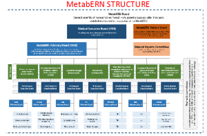 MetabERN Governace Structure