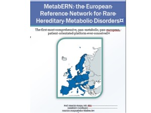 MetabERN Synopsis