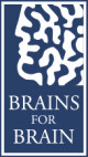 logo_brains4brain